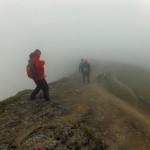 Ascending through the scotch mist